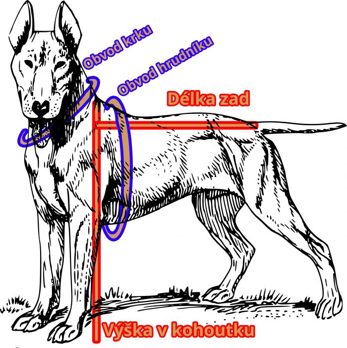 Základní schéma pro měření psa